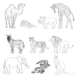 Vector illustration, the image of animals, animals. Black and white line. Elephant, kangaroo, camel, lion, zebra, rhinoceros, gira Stock Photography