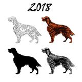 Vector illustration of an image of a dog breed of Setter. Black line, black and white and gray spots, black silhouette, color imag royalty free illustration