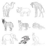 Vector illustration. Image rhino kangaroo, giraffe, elephant, zebra, snake, crocodile, camel, tiger a black line. Stock Image