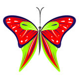 Vector illustration of insect, colorful red and green butterfly, isolated on the white background Stock Image