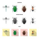 Vector illustration of insect and fly symbol. Set of insect and element stock vector illustration. royalty free illustration