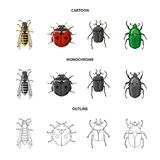 Vector design of insect and fly icon. Collection of insect and element vector icon for stock. stock images