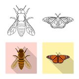 Vector design of insect and fly icon. Collection of insect and element vector icon for stock. royalty free illustration