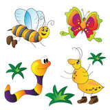 Vector illustration of insects Royalty Free Stock Photos