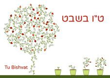 Vector illustration of Jewish holiday. A tree with pomegranate fruits, branches, swirls for greeting card or poster. Text Tu Bishv vector illustration