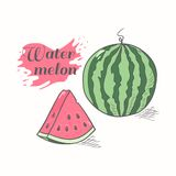 Vector illustration of juicy watermelon Royalty Free Stock Photo