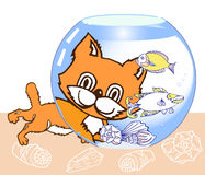 Kitten,  Aquarium and Fish Royalty Free Stock Photos