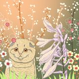 Vector illustration of a kitten in the garden. And blooming flowers Stock Illustration