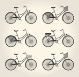 Vector illustration of ladies vintage bicycle Stock Photography
