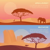 Vector illustration of landscape in savanna Stock Images