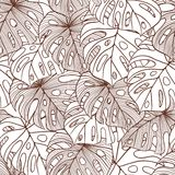 Vector illustration leaves of palm tree Royalty Free Stock Photos