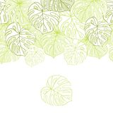 Vector illustration leaves of palm tree Stock Image