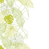 Vector illustration leaves of palm tree. Seamless Stock Images