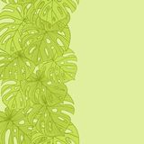 Vector illustration leaves of palm tree. Seamless Royalty Free Stock Images