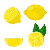 Vector illustration of lemon fruits. Stock Photo