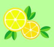 Vector illustration of lemon. Vector illustration of lemon for icons, emblem, logo. Yellow citrus on a green background stock illustration