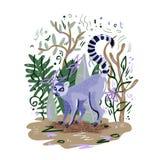 Vector illustration with lemur catta vector illustration