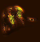 Vector illustration of leopard Royalty Free Stock Photos