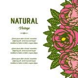 Vector illustration lettering of natural vintage with pattern art frames flower roses stock illustration