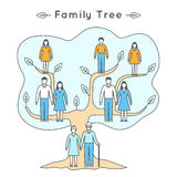 Vector illustration in linear style. Flat icons. Family tree. Stock Photography