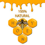 Vector illustration of logo for the theme of bees and honey Stock Photography