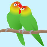 Vector illustration of lovebirds parrots. Love. Pair of birds Royalty Free Stock Images