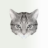 Vector illustration of low poly cat icon. Geometric polygonal cat silhouette. Animal illustration for tattoo, coloring Royalty Free Stock Photos