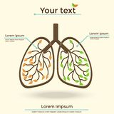 Vector Illustration lungs Stock Photo