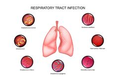 Lungs and respiratory tract infections Royalty Free Stock Photos