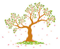 Vector illustration of lush, blossom tree with green leaves, pink flowers and couple of lovely birds Stock Images