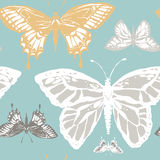 Vector illustration with magic hand drawn butterfly Royalty Free Stock Images
