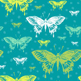 Vector illustration with magic hand drawn butterfly Royalty Free Stock Photos
