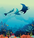 Vector illustration with mantas, freediver and coral reef. Silhouette of mantas, freediver and coral reef on a blue sea background. Vector illustration with Stock Images
