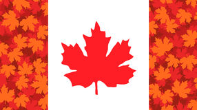 Vector illustration with maple leaf, Canada flag Royalty Free Stock Image