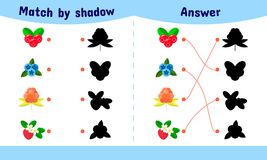 Vector illustration. Matching game for children.. Vector illustration. Matching game for children. Connect the shadow of the berries. cloudberries, blueberries Stock Photography