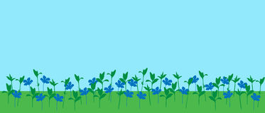 Vector illustration of meadow with grass and flowers under blue sky. With space for your text Stock Photos