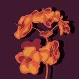 Vector Illustration mit Blumen auf dem dunklen Hintergrund Stockfotos