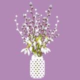 Vector Illustration mit Vase, Pussyweide, Schneeglöckchen Lizenzfreie Stockbilder