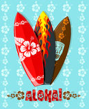 Vector illustration of modern surf boards. Vector illustration of modern aloha surf boards Royalty Free Stock Photography