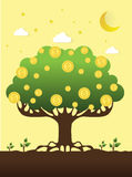 Vector illustration of a money tree with coins Stock Photo