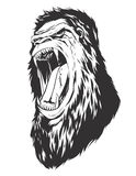 Vector illustration with monkey head. Ape head. Monochromatic logo for your t-shirt Royalty Free Stock Image