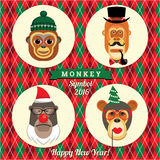 Vector illustration of monkeys, symbol of 2016. Trendy hipster style. Element for New Year's design. Image of 2016 year of the monkey Royalty Free Stock Image