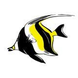 Vector illustration of Moorish Idol fish. On white background Stock Image