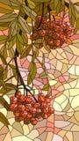 Vector illustration mosaic of red rowan. Stock Photography