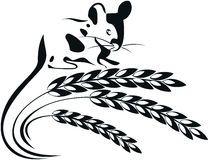 Vector illustration of a mouse and wheat spikelets Royalty Free Stock Photography