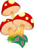 Vector illustration of mushroom cartoon Royalty Free Stock Photography