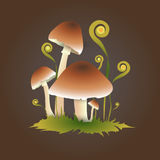 Vector illustration of mushrooms Royalty Free Stock Photos