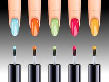 Vector illustration of nail polish in different colors being applied to nail. Beauty concept Stock Photo