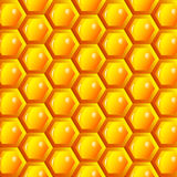 Vector Illustration of a Natural Background with Honeycombs Royalty Free Stock Photo