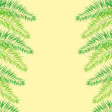 Vector Illustration of a Natural Background with Palm Trees. Vector Illustration of a Natural Background with place for text Royalty Free Stock Photo